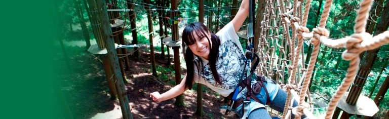 Hyogo's only Forest Adventure